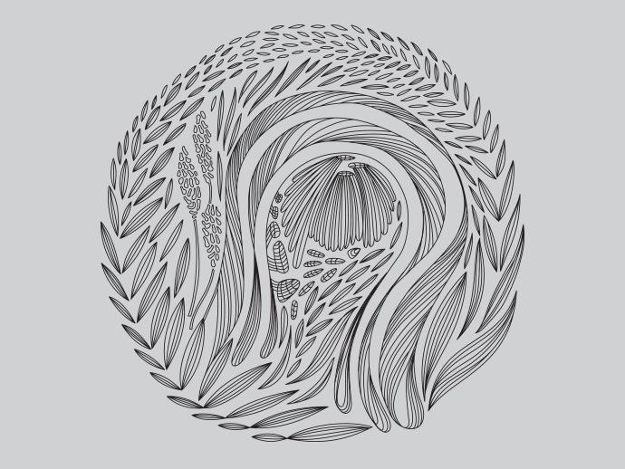 monika_design_vatea2